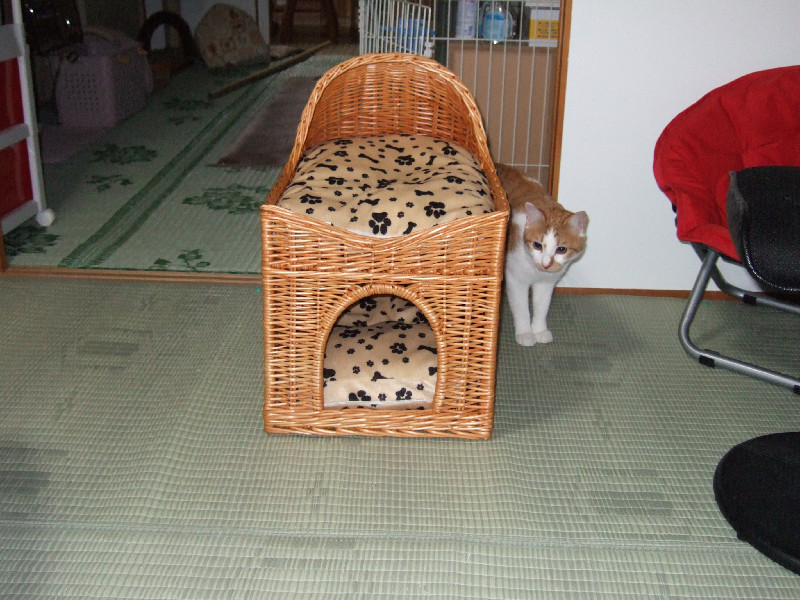 2007_0519_9